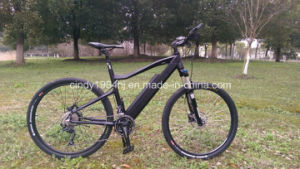 Mountain Style Electric Bikes with Hidden Battery in Frame Max Motor Power 500W (HJ-M21)