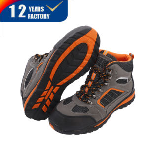 China European Hot Sale Ce Safety Shoes