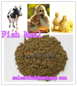 Animal Feed Additive Fish Meal (protein 60%min)