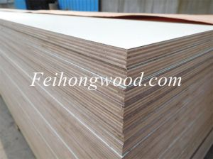 HPL (High Pressure Laminated) Plywood with Eucalyputs Core for Furniture