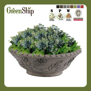 Rose Decor Garden Planter with Lacy Rim AAA39---Green Ship