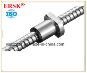 CNC Ball Screw for Machine Made in China pictures & photos