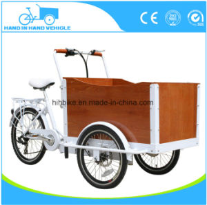 Hot Sale Cheap Electric Cargo Bike Motorcycle Tricycle pictures & photos