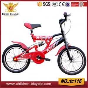 "Suspension Folding Bike 16"" 20"" pictures & photos"