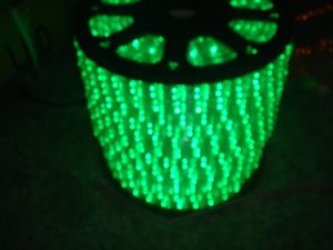 Rice Rope Light (SRL-RICE-4WIRE) pictures & photos