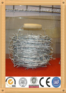 2014 Hot Dipped Galvanized Razor Barbed Wire (TYE-16) pictures & photos