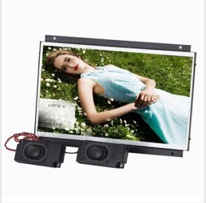 10inch Open Frame LCD Screen pictures & photos