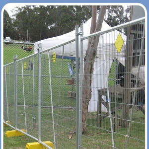 Galvanized Temporary Fence for Farm Protection