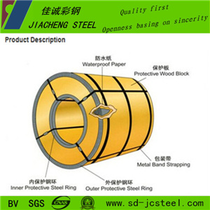 China Professional Supplier Dx51d Color Coated Steel Coil for India