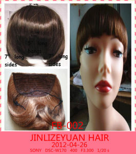 China Hairpiece Fringe Hair Bangs Human Hair Fringe With Clips