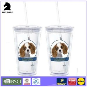 Custom BPA Free San Double Wall Tumbler Mug with Leak Proof Straw