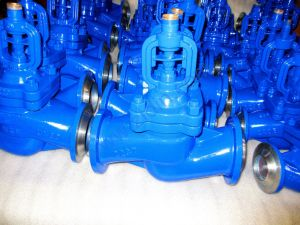 DIN Bellows Globe Valve Butt Weled Ends for Steam System