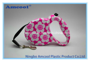 Import Pet Animal Products From China pictures & photos