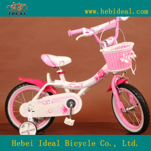 Kids Bike for Baby Girl