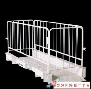 Riskless Crowd Control Barrier Fence
