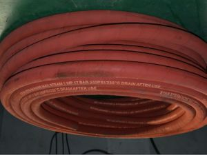 Two Wire Braided High Temperature EPDM Steam Hose 232 Degree pictures & photos