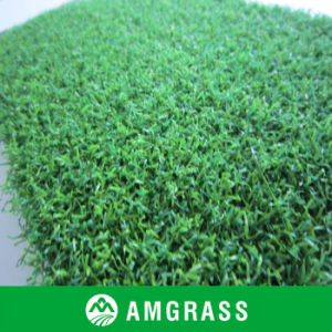 Synthetic Turf and Grass for Decoration and Ornament (AC212PA)