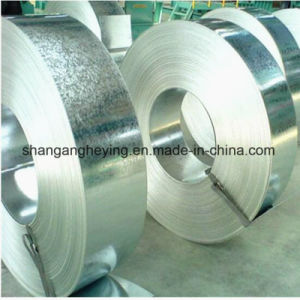 Hot Dipped Galvanized Steel Coil/PPGI/PPGL Color Coated Galvanized Steel Strip in Coil