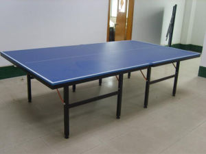 Professional Ping Pong Tables (TE-04) pictures & photos