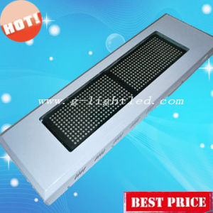 600w LED Grow Light (GL-G-600W)