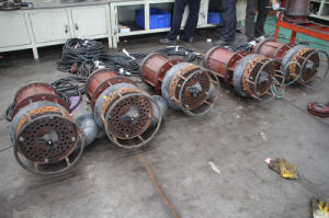 Submersible Grinder Pump pictures & photos