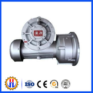 Hoist Reducer with Worm and Gear