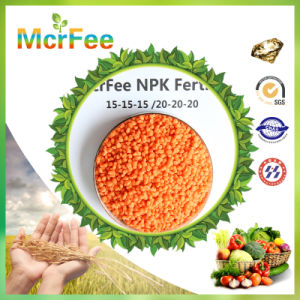 Quick Released Type Water Soluble NPK 20-20-20 Fertilizer