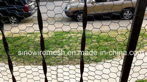 Sailin Garden Fence with Hexagonal Wire Netting
