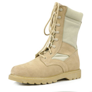 Military Swat Boots, Desert Army Combat Boots pictures & photos