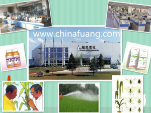Insecticide Nitenpyram 95% Tc, Acaricide Pesticide Agrochemical Hot Sale CAS 150824-47-8 pictures & photos