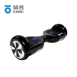 Chic Black Two Wheel Balance Electric Scooter