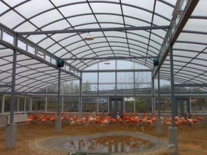 Multi Wall Roofing Panel Sheet Polycarbonate Sheet Greenhouse