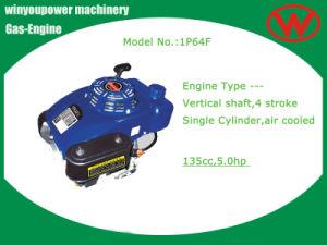 China Zongshen Vertical Shaft Engine (1P64) - China Vertical Shaft