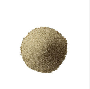 Gloden Quality of L-Lysine 98.5% Feed Grade pictures & photos