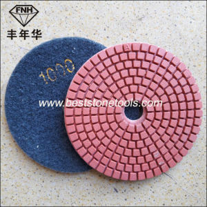 Wd-2-100 Diamond Flexible Polishing Pad in Abrasive Tool
