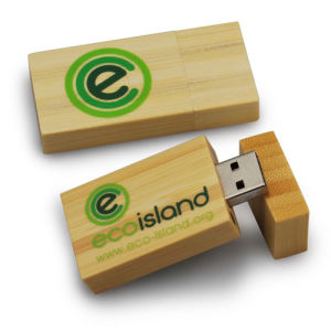 Bamboo USB Stick, Dark Color Light Color Bamboo USB Flash Drive 2/4/8/16/32GB pictures & photos