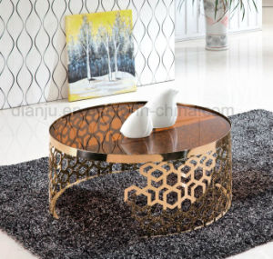Luxury Home Furniture Special Design Coffee Table (CT098L)