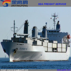 Promotional China Sea Freight Logistics Shipping Service