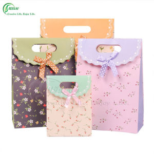 Beautiful Paper Bag for Gift (KG-PB009)