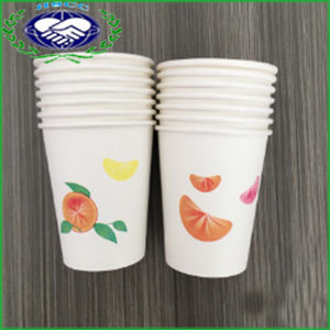 Disposable Hot or Cold Beverage Paper Cups