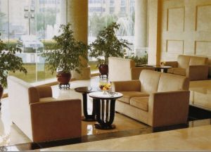 Hotel Upholstery Sofa/Hotel Lobby Sofa/ Luxury Hotel Sitting Sofa (JNS-014) pictures & photos