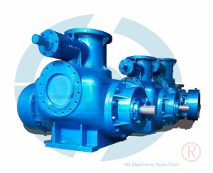 Horizontal Twin Screw Pump for High Viscosity Liquid pictures & photos