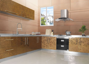 Waterproof Modern Stainless Steel Kitchen Cabinets for Seaside City  (BR-SS008)
