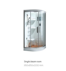Good Quality Steam Room (DSJ115R) pictures & photos