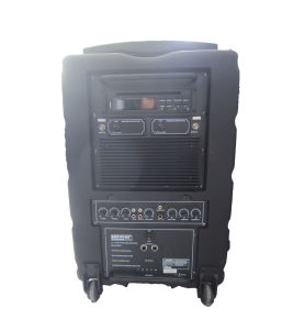 Pl-10 PA Speaker Multi-Function Amplifier Professional