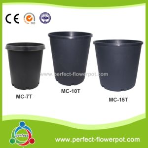 Qualitied Plastic Pot For Agricultural Growing Nursery Container
