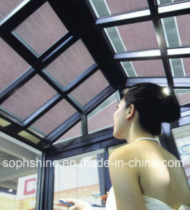Auto Skylight with Double Hollow Glass Built in Honeycomb Shades for Sunlight Room Roof
