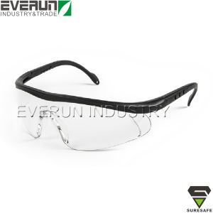 Flexible Leg Safety Glasses (ER9338) pictures & photos