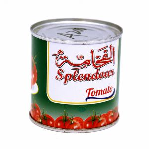 Canned Tomato Paste 198g with High Quality pictures & photos