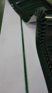 Sidewall PVC Belt